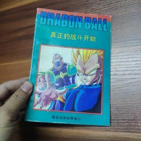 漫画:七龙珠-重返龙珠世界卷4-真正的战斗开始