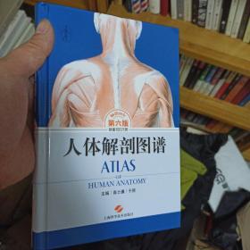 人体解剖图谱