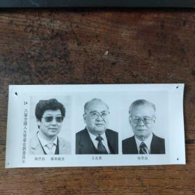 1993年,新当选的八届人大副委员长:帕巴拉·格列朗杰(藏族)、王光英、程思远