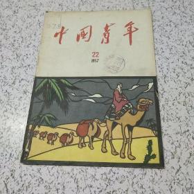 中国青年1957年第22期
