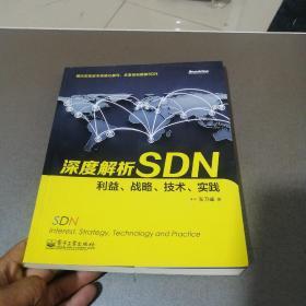 深度解析SDN 利益、战略、技术、实践