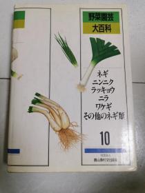 野菜园芸大百科  10(日文原版书)