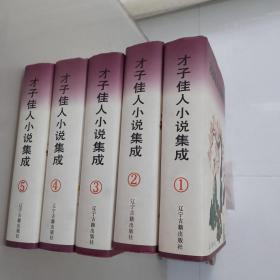 才子佳人小说集成(五册全)