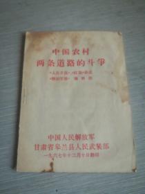 中国农村两条道路的斗争