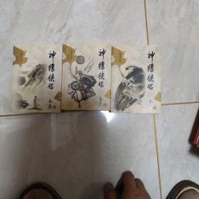 神雕侠侣(全四册) 2.3.4总共三本