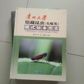 贵州大学馆藏昆虫(头喙类)模式标本图志