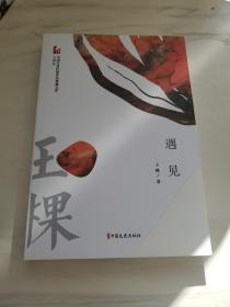遇见(中国专业作家作品典藏文库·王棵卷)
