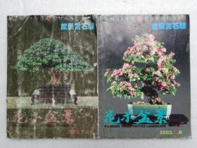 花木盆景2003.6.B、7.B盆景赏石版(两本合售)