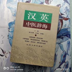 汉英中医辞海