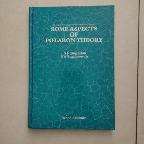 some aspects of polaron theory(极化子理论的几个方面)英文原版