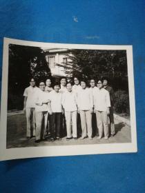 老照片,1984年与罗琼同志在南郊宾馆合影---尺寸15.2x13厘米