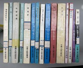 拉丁美洲文学丛书  15 本合售!