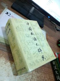 中国成语大辞典 有黄斑