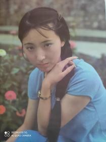 《红楼梦》林黛玉扮演者陈晓旭(对开)(五张合售)(全新)