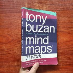 Mind Maps at Work: How to be the best at work and still have time to play[工作中的思维导图]
