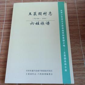 王菜园村志,六姓族谱(约930一2018)