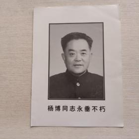 杨博同志永垂不朽