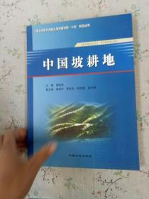中国坡耕地