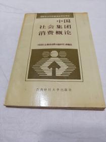 中国社会集团消费概论