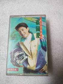 磁带:蔡国庆 我心中的故事