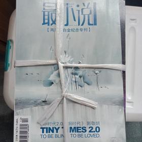 最小说,2008-2010年,6元一本