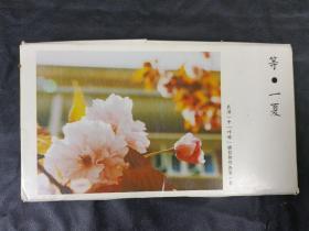 """明信片《 等一夏》,武汉一中""""咔嚓""""摄影部作品第一季,10张"""