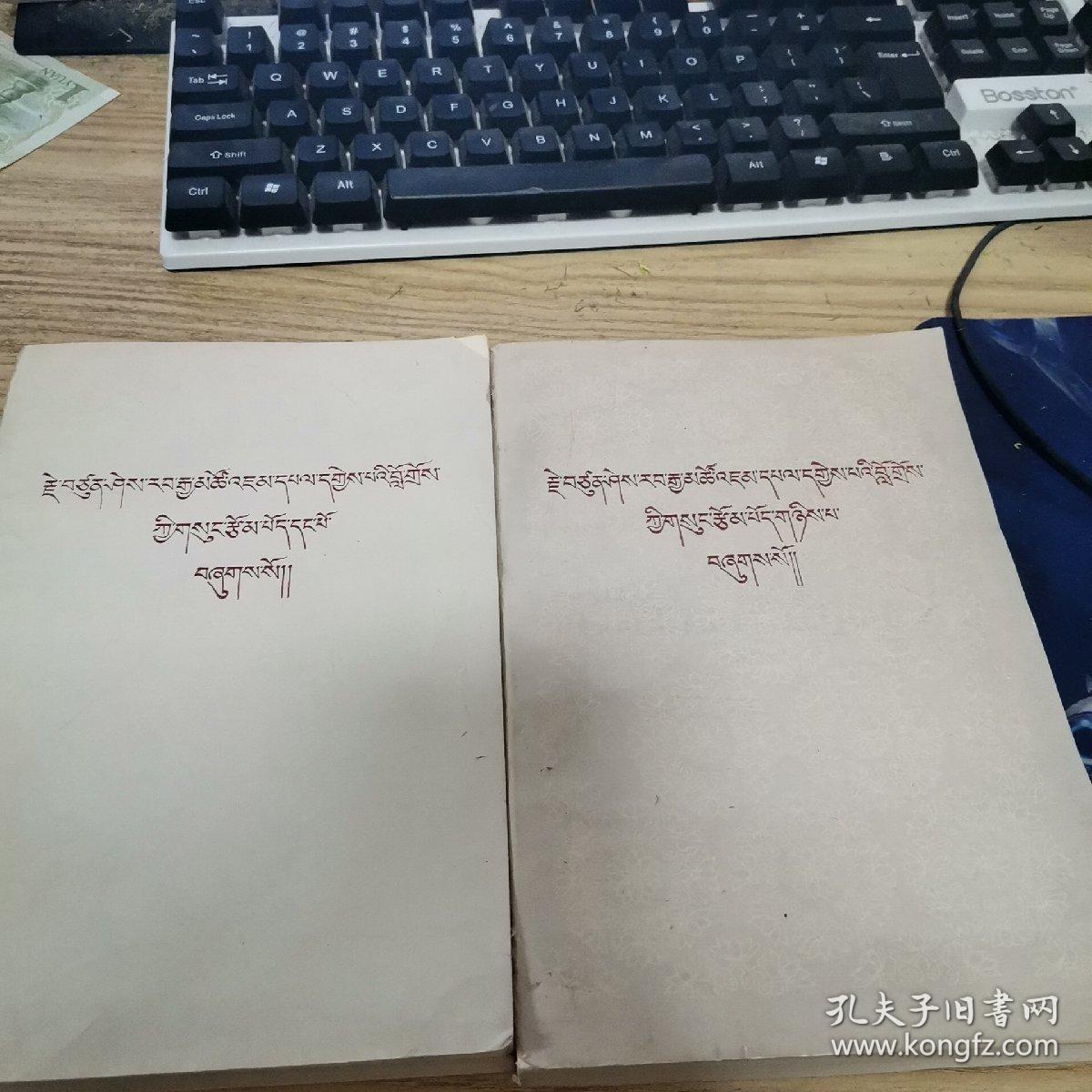 藏文版 喜饶嘉错文集 第一卷 第二卷(合售1982年一版一印)