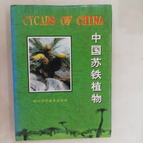 中国苏铁植物