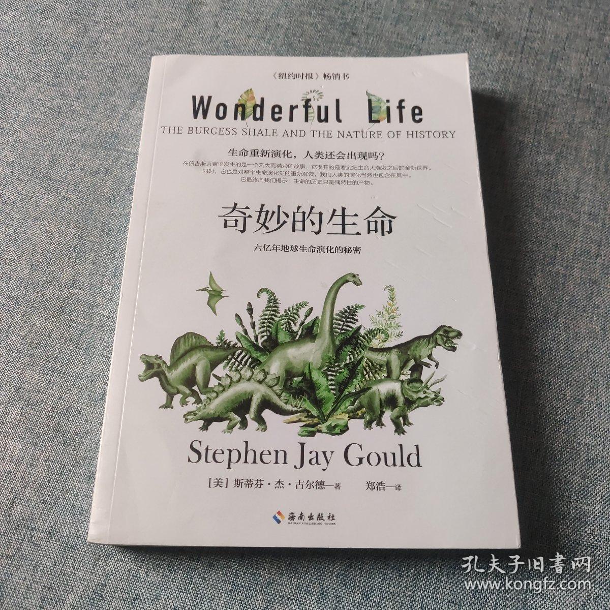 奇妙的生命(生命重新演化,人类还会出现吗?)