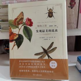 发现最美的昆虫