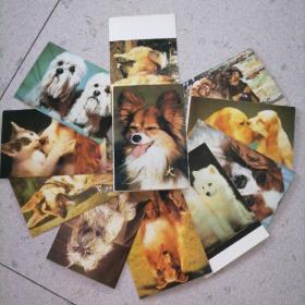 早期世界名犬明信片(10张全)