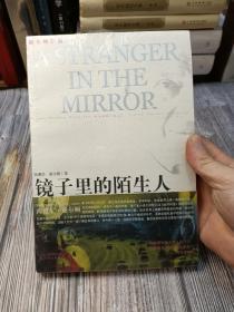 镜子里的陌生人