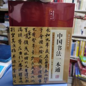 中国书法一本通 青少年中国传世书法技法书法大全 传世书法培训教材书