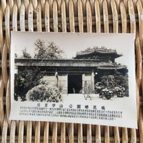 老照片 北京中山公园塘花坞