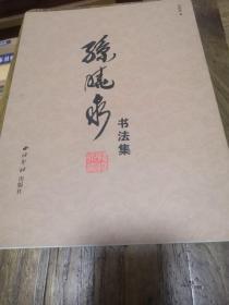 孙晓泉书法集
