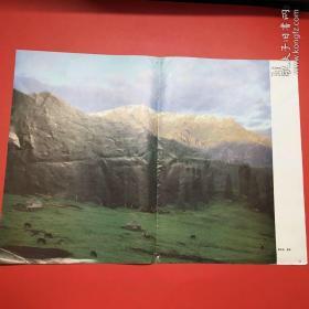 剪报,《人民画报》1983年的插页《天山牧场》