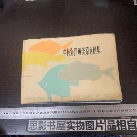 中国海洋鱼类原色图集 第一集【精装】