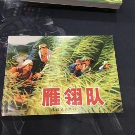雁翎队正版连环画64K