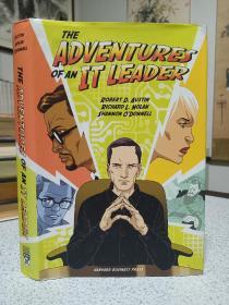 2009年,英文原版,精装带书衣,the adventures of an IT leader