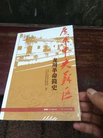 红色广东丛书:广东中央苏区龙川革命简史