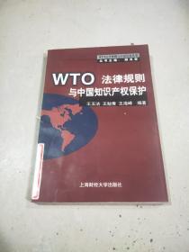 WTO法律规则与中国知识产权保护。