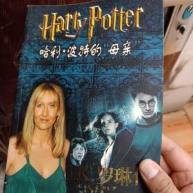 """哈利・波特的""""母亲""""――J・K・罗琳传:J。K。罗琳传"""