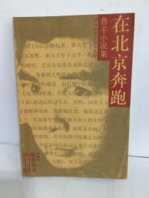 在北京奔跑 鲁羊小说集