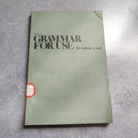 应用英语语法第2册*