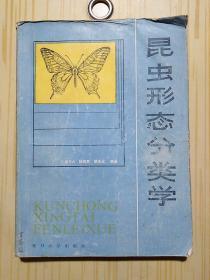 昆虫形态分类学