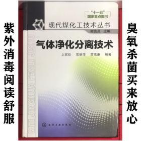 现代煤化工技术丛书:气体净化分离技术