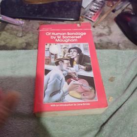 外文书 (以图片为止、、外文不懂)46