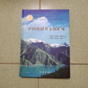 中国新疆非金属矿床