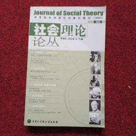 社会理论论丛(第6辑)