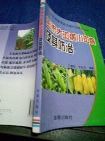 玉米大斑病小斑病及其防治